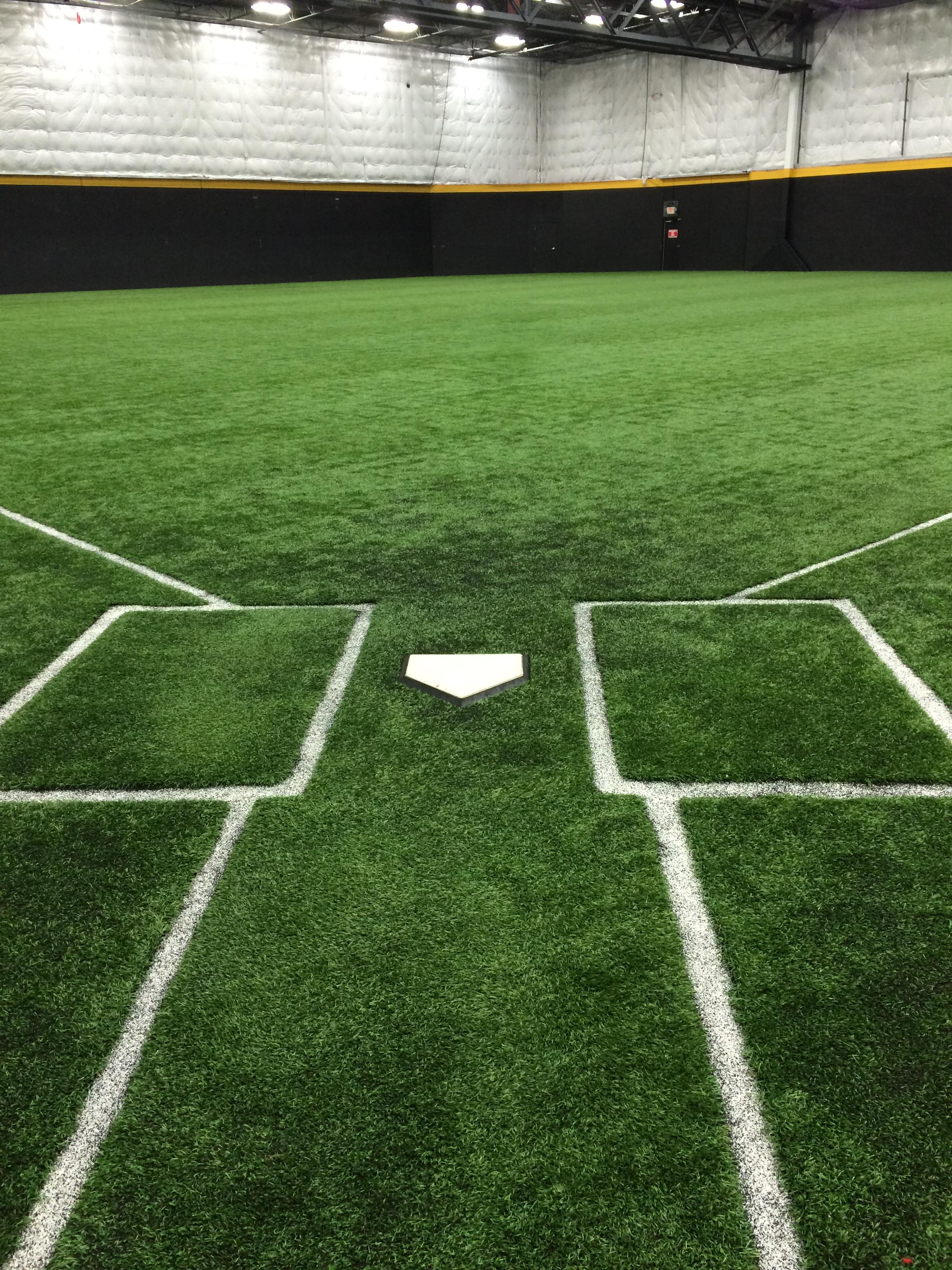 Bud Dome II Field